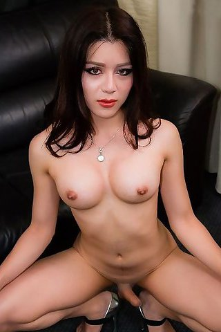 Asian Tranny Toei Galleries 38