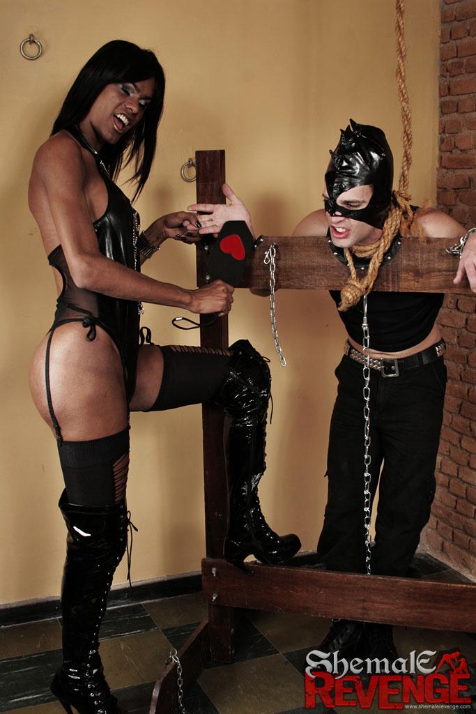 prostitutok-dom-transvestit-porka-foto