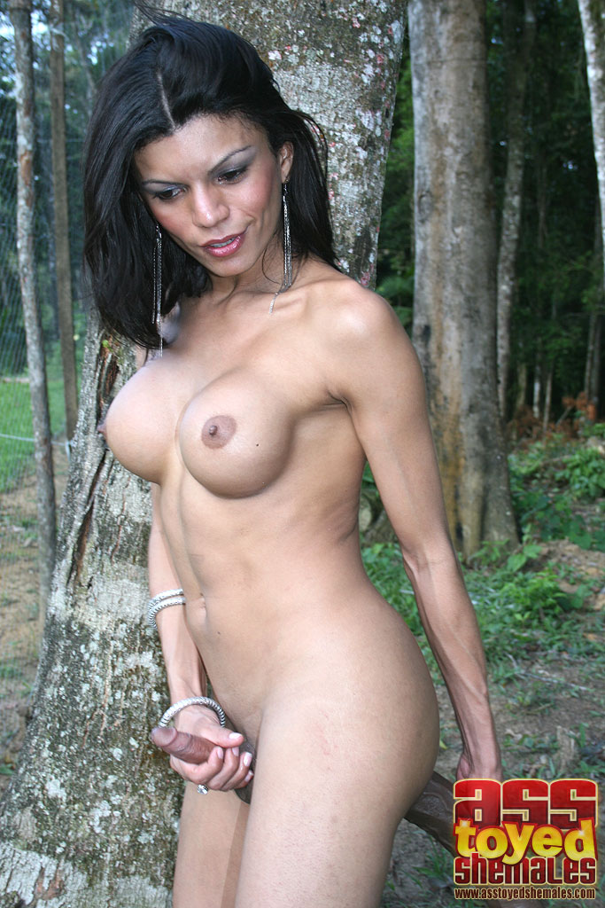 Superstar Larissa Dos Santos Lima Nude Gif
