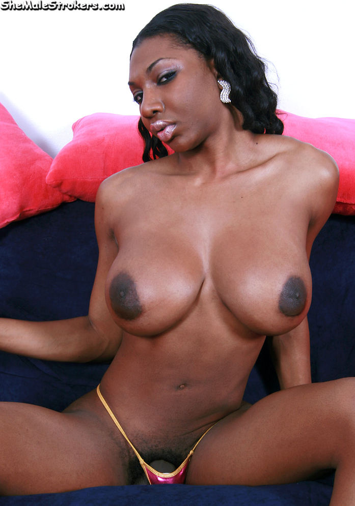 Natasha black shemale