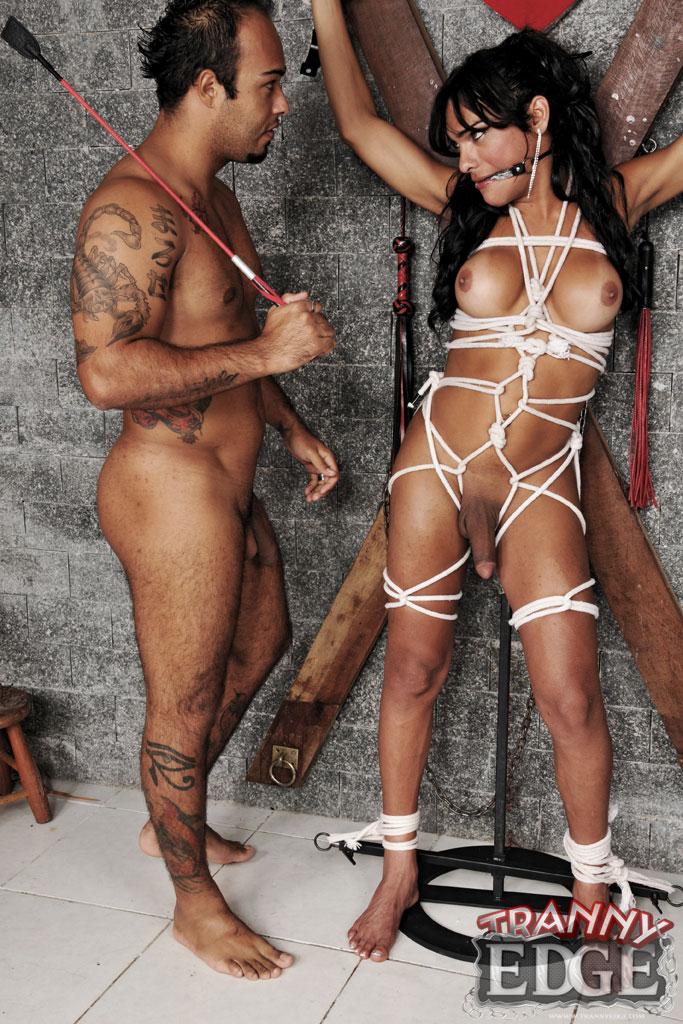 Transsexual bondage webcam shemales bondage cam