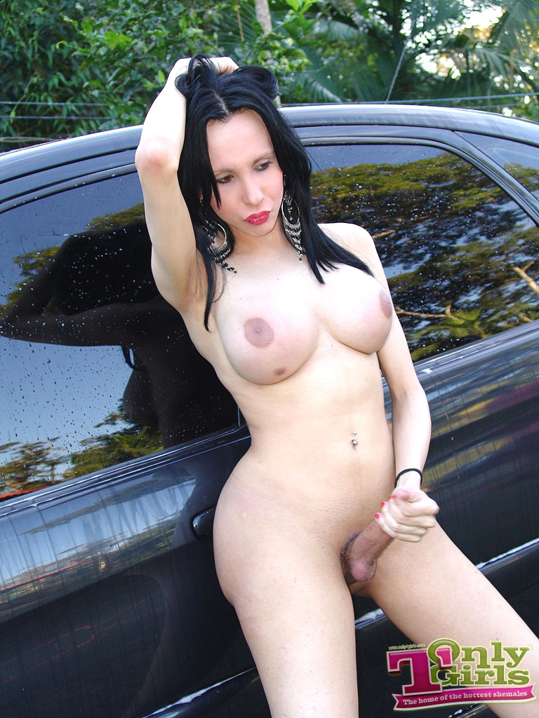 shemale car