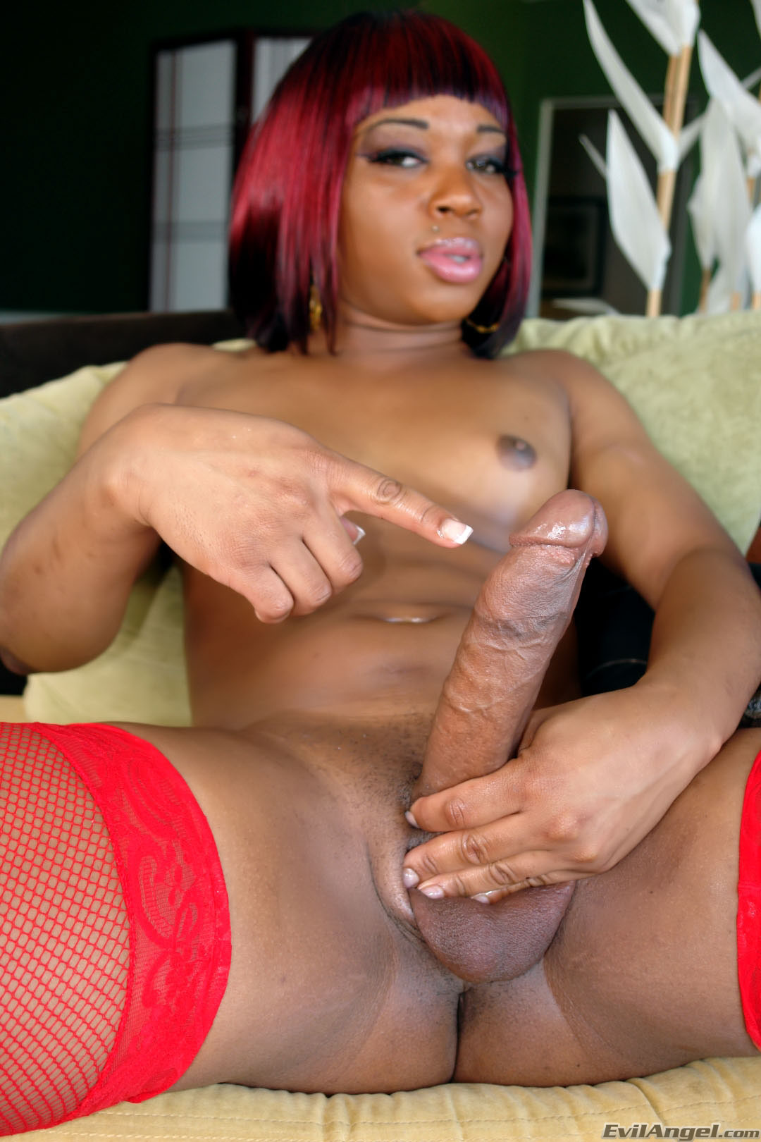 gay big cock tranny - Muscular Tranny In Stockings Shows Big Cock