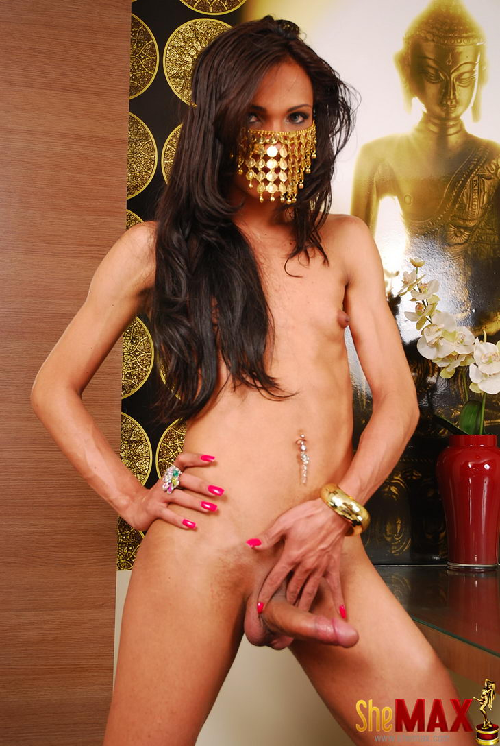 Indian Shemale Pictures Beautiful indian shemale posing in panties & jerking dick - photo 11