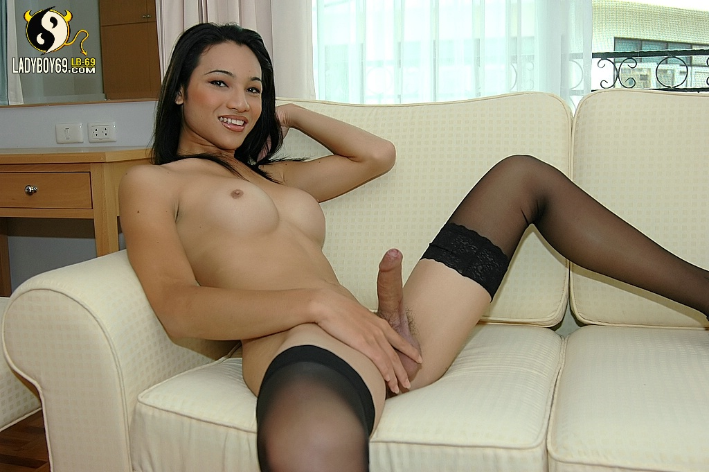 Tranny tube galleries free
