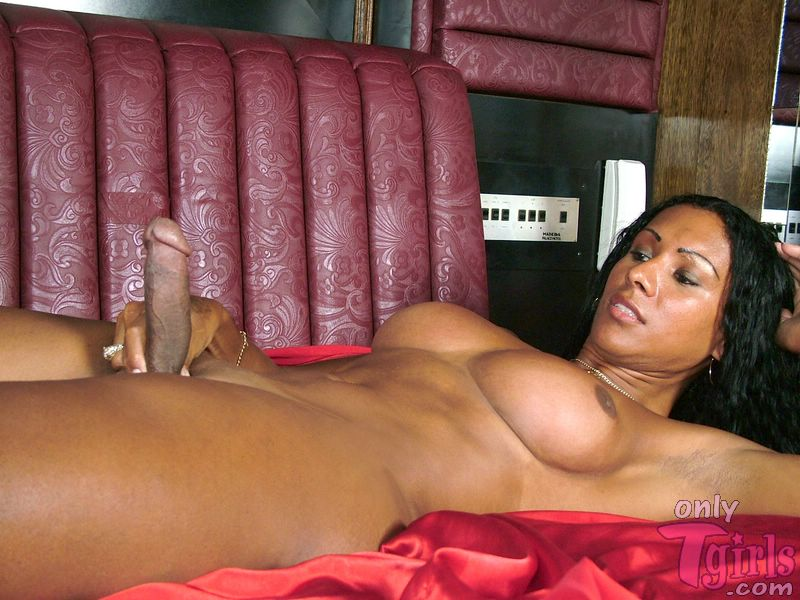 Redhead ebony shemale poses on bed and jerks off
