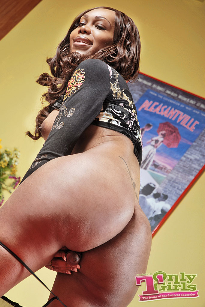 shemale Ass pictures black