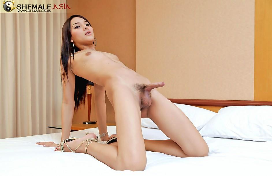 Asian shemale photo