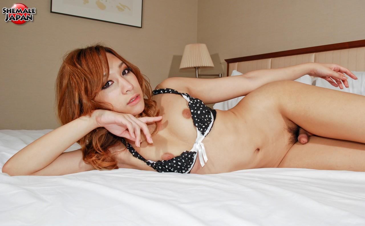 Male Porn Pics Famous Transsexual Women