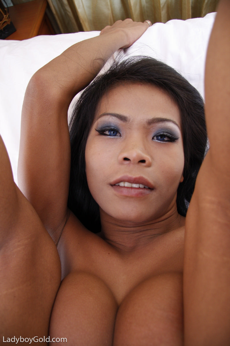 Busty asian ladyboys, naturist nude sex
