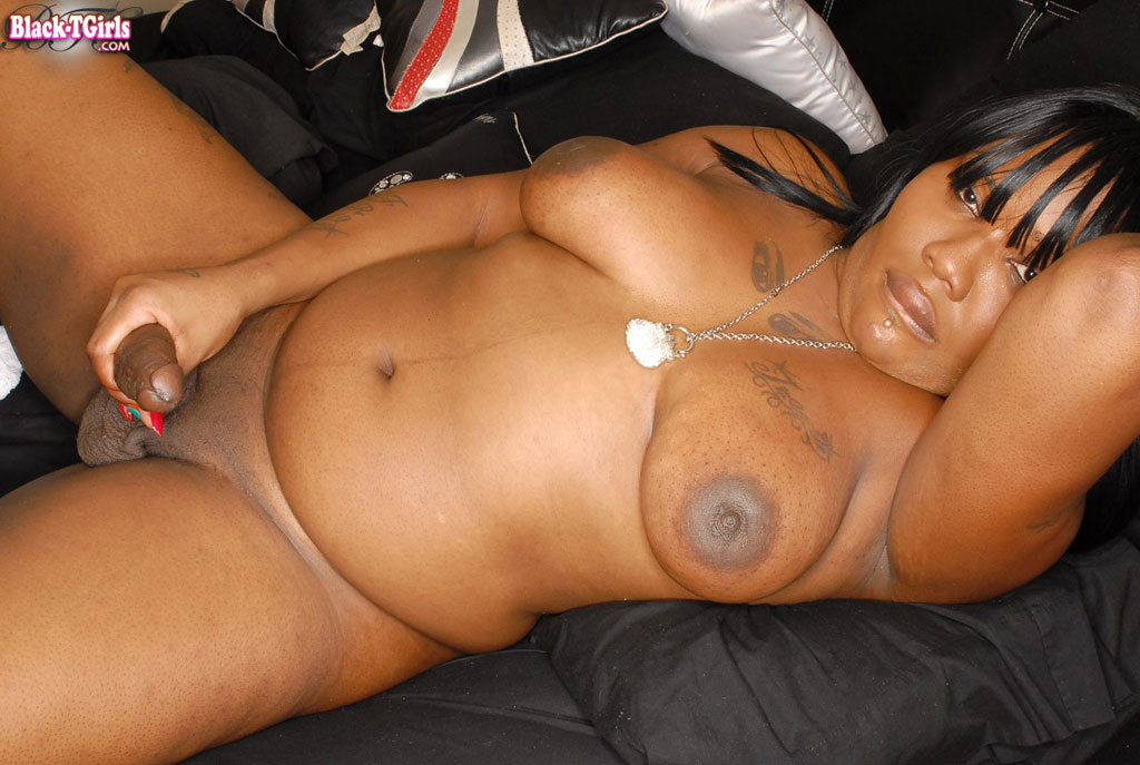 ebony-chubby-shemales-videos