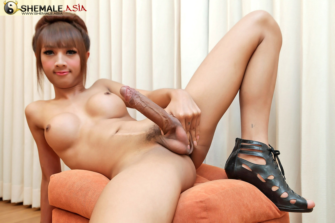 Hung asian ladyboy
