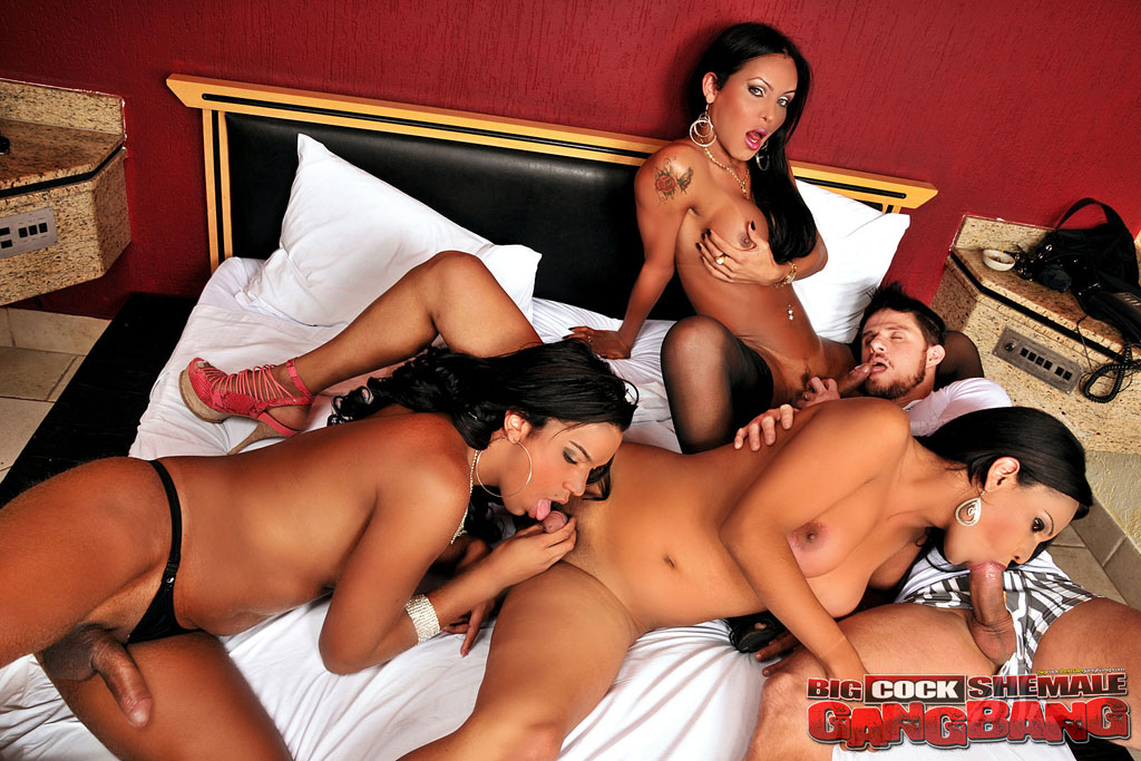 Shemale group sex galleries