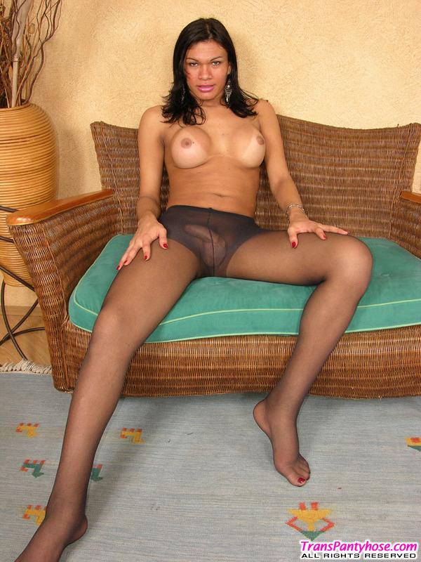 Michele tranny pantyhose action jenny