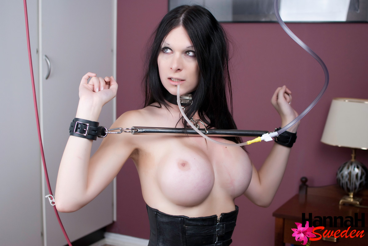 bdsm chastity belt free pics