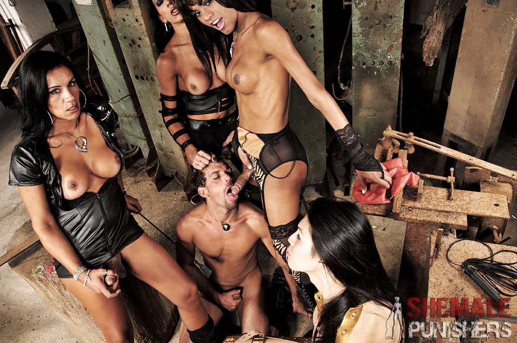 Transsexual sex clips