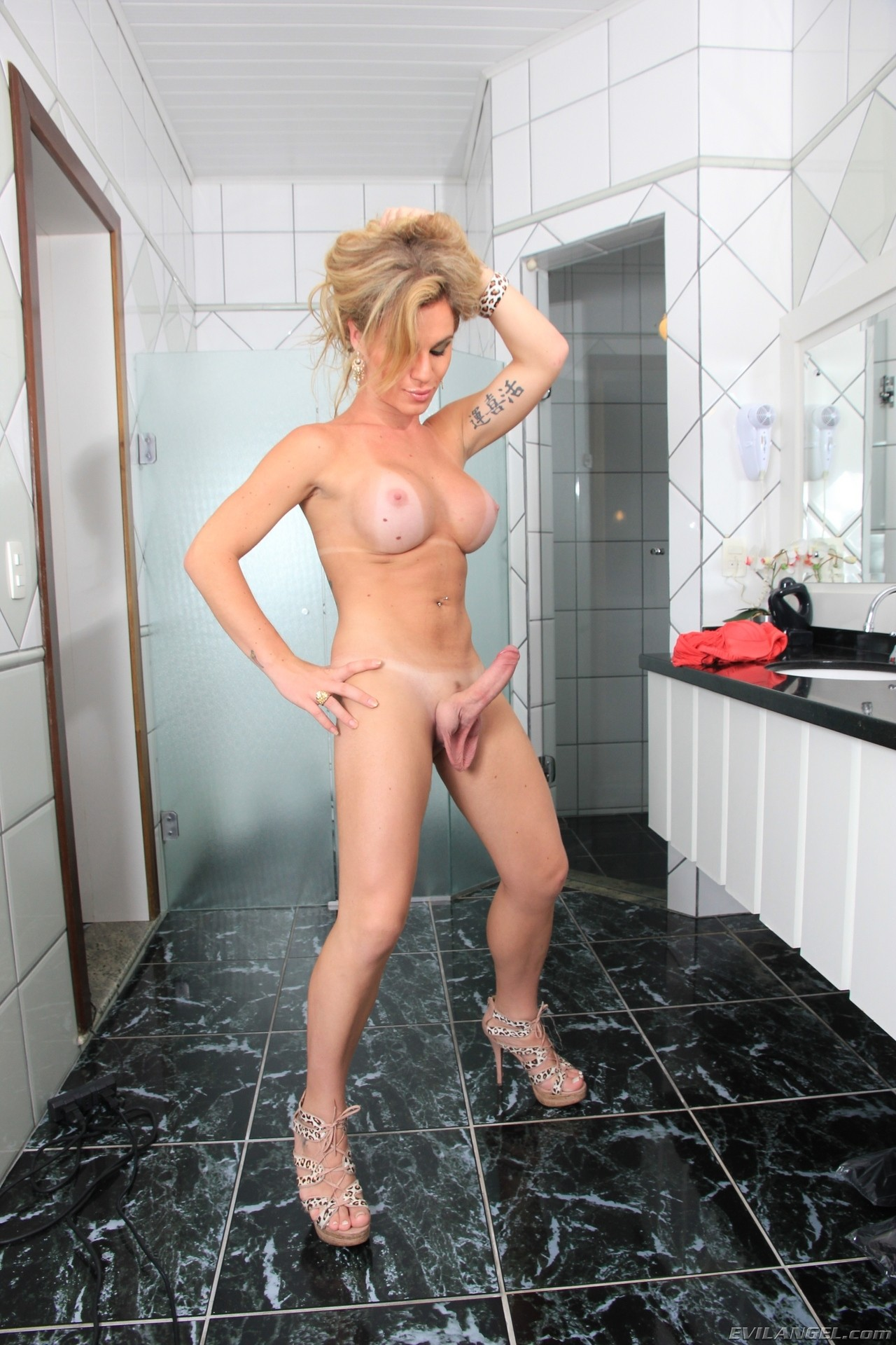 Adult archive Free tranny cocks