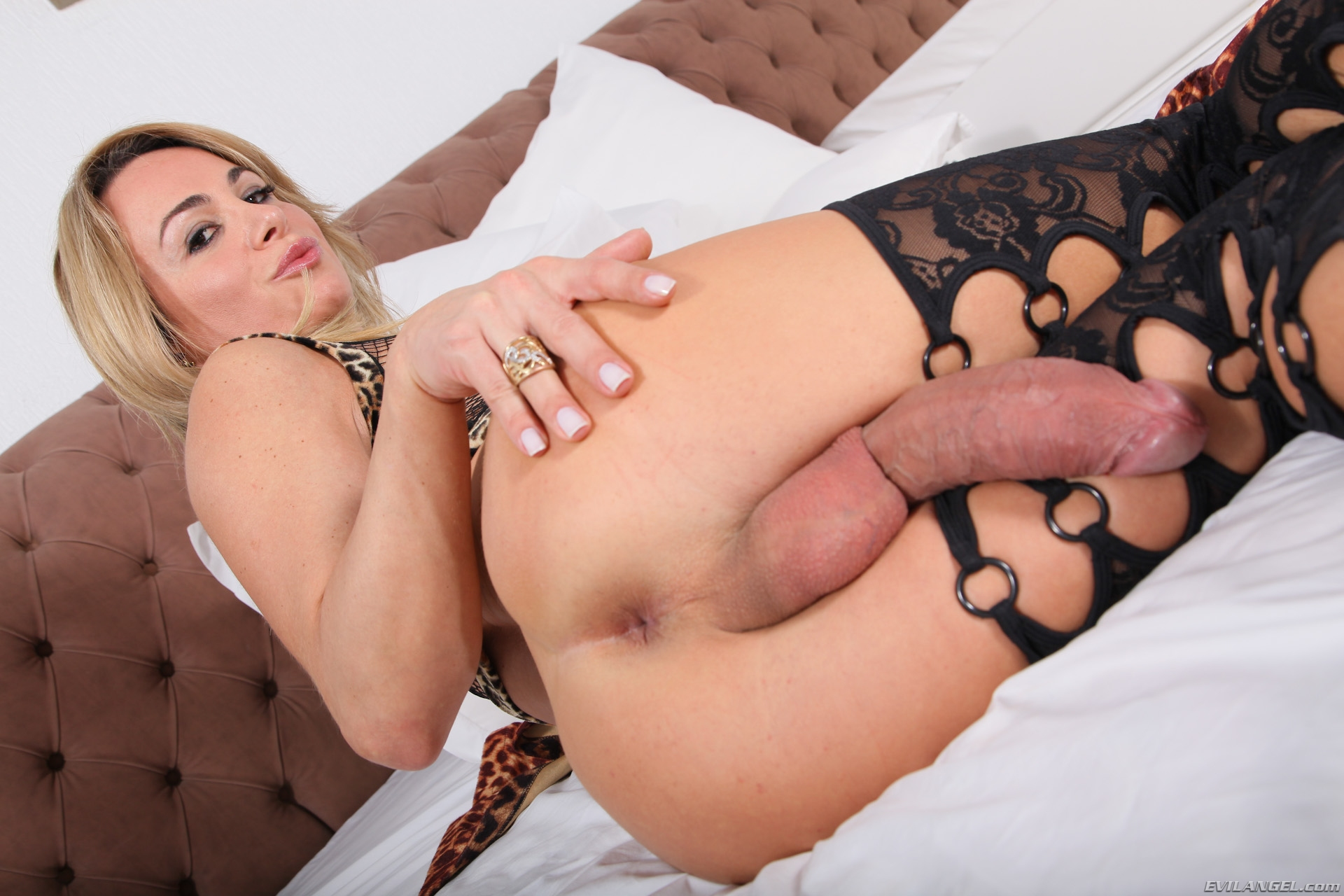 Free Free Shemale Sex Images, Tranny Porno In Full Length