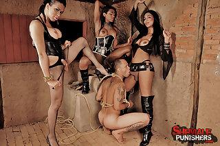 Free live cam xwith pornstar