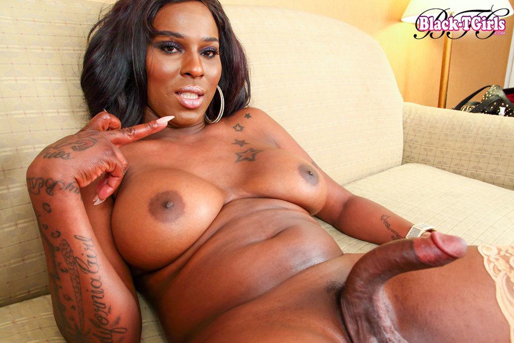 Big ass black trannys cam, free black shemale sex webcam