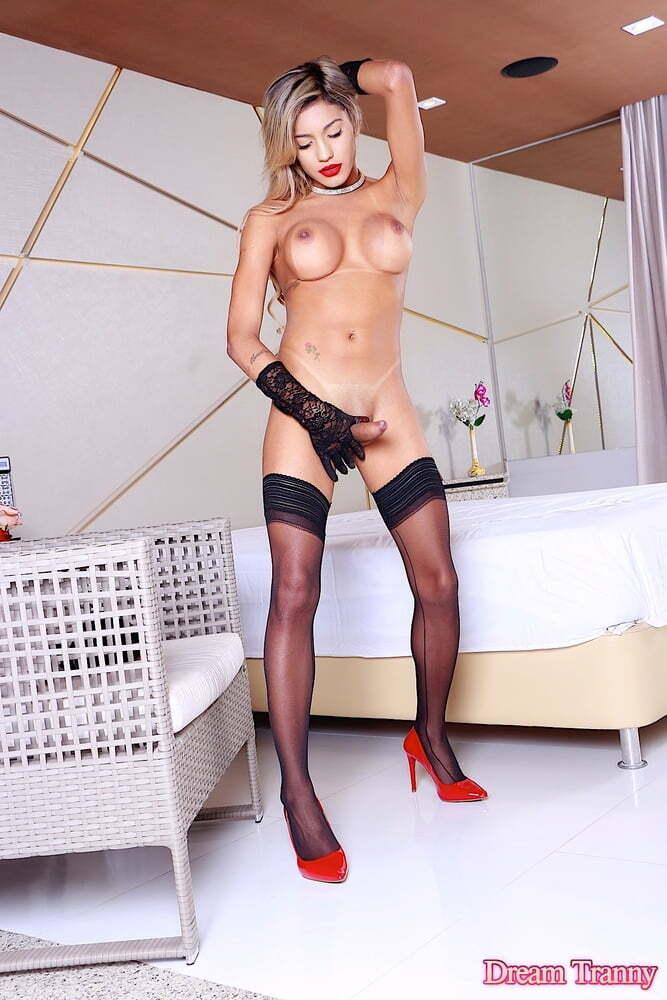 Trans loira gostosa Pati Cameron seduziu o macho - Só Travestis