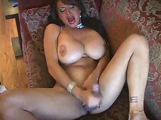 Busty shemales cumshots