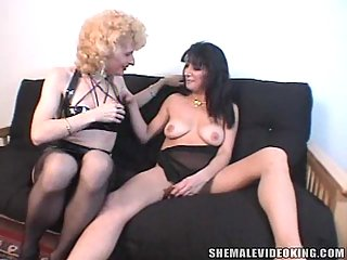 Petting And Sucking For A Kinky Tgirl