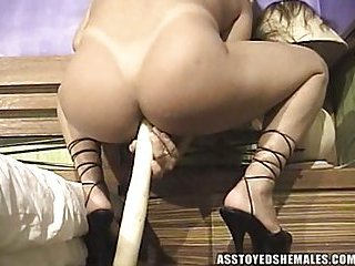 Titty Shemale Solo Ass Toying