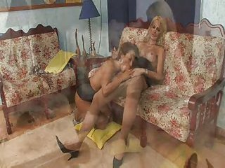 Sweet lovers having sex