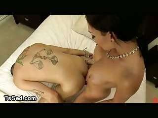 Tied up guy fucked by busty tranny in bedroom