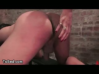 Bound guy gets spanked and mouth fucked by tranny