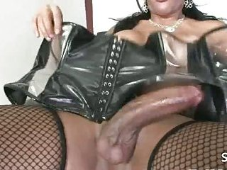 Breasty shemale in stockings and leather