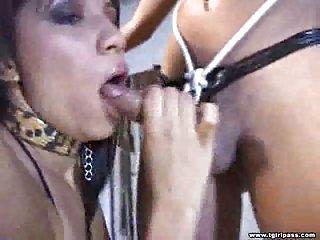 tough oral domination