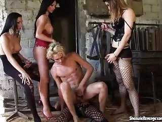 Four shemales and a gay in a hot gangbang action