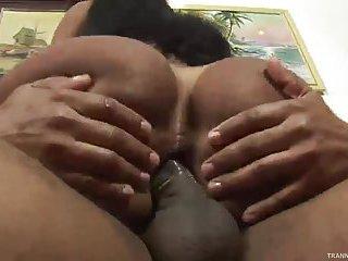 Busty Latina tranny ass drilled hard