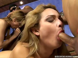 Danielle Albuquerque, Duda Gaucha, Sabrina Campos - Hung Shemales In a Wild Orgy