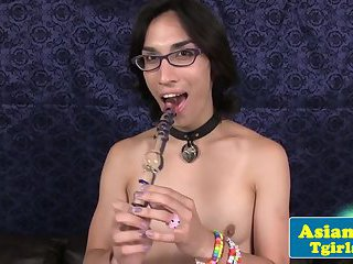 Asian tgirl Cam tugs her cock and toys ass