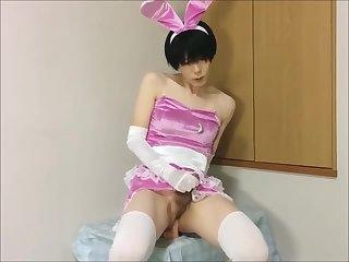 Bunny Crossdresser Josou