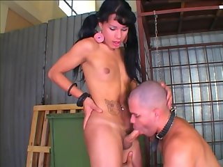 Mutual rest with a skilful latina tranny
