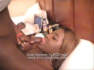 Stacy Galore Guest Shemales