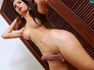 Majestic Oiled Shemale Ass