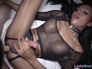 Ebony ladyboy gets her ass bareback penetrated to the hilt