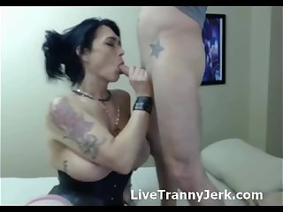 Busty Shemale Gives Passionate Blowjob Live
