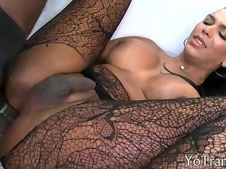 Shemale in shear pantyhose anal rammed