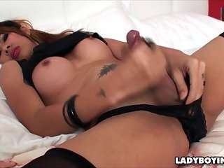 Busty Asian Ladyboy In Stockings