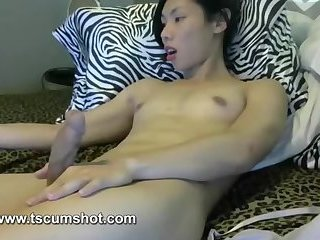 Cute asian ladyboy jerking big cock on webcam