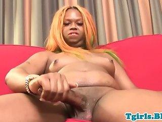 Chubby ebony tranny shaking her bigbooty