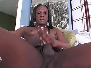 Big dick black Tgirl
