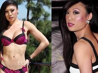 Sexy ladyboy and tranny pornstars around the World.
