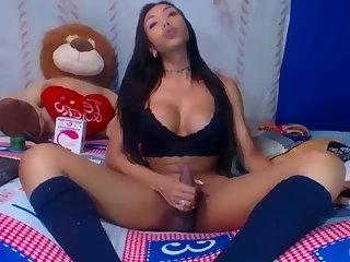 Latina shemale beauty webcam